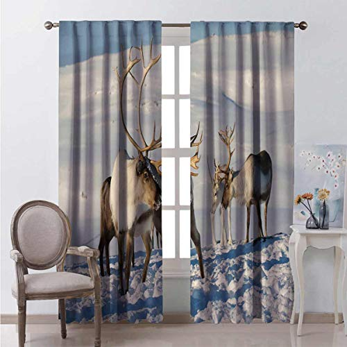 Winter Energy-Saving and Noise-reducing Reindeers in Natural Environment Tromso Northern Norway Caribou Antler Wildlife Rod-Shaped Pocket Curtains for The Living Room W72 x L72 Inch