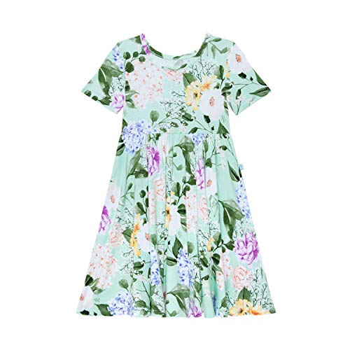 Posh Peanut Little Girls Dresses - Baby Clothes from Soft Viscose from Bamboo - Perfect Kids Summer Dress (Erin, 2T)