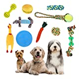 LKJYBG Dog Rope Toys Chew Teething Training Toys Natural Cotton Interactive 10Pcs Set Cotton Rope for Small and Medium Dogs,#2