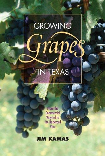Top vineyard vines eagles for 2020