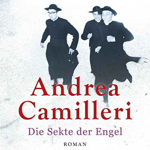 Die Sekte der Engel audiobook cover art