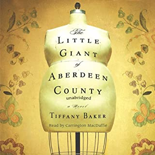 The Little Giant of Aberdeen County audiobook cover art