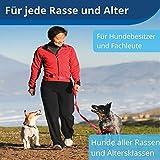 Belohnungs Leckerli Hundetraining, 30Meter Reichweite, für Welpen & Hunde - 6