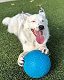 Jolly Pets Large Soccer Ball Floating-Bouncing Dog Toy, 8 inch Diameter, Ocean Blue