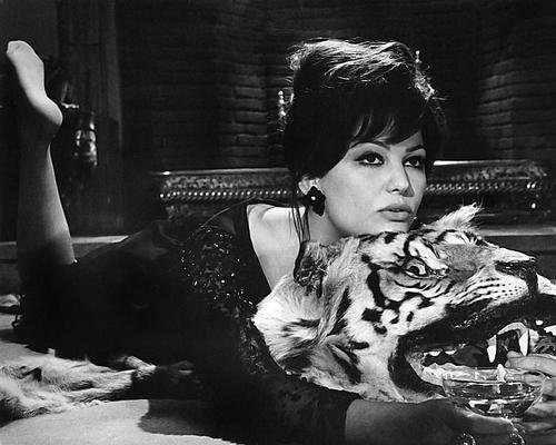 The Pink Panther Claudia Cardinale 16x20 Poster lying on rug