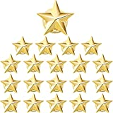 Hicarer 20 Pieces Star Badge Gold Lapel Pin for 4th of July Memorial Day Veterans Day (0.63, 0.79 inch)