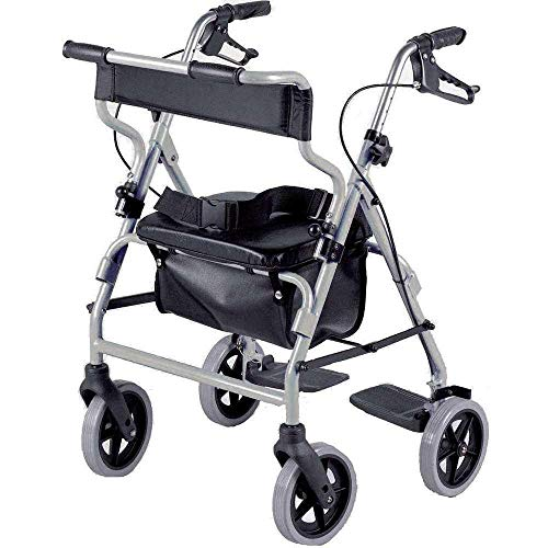 2 In 1 Rollator & Transfer stoel