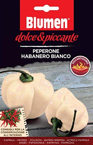 Dolce & Piccante Haberno Bianco Semillas, 1 Litros, Negro, 20x0.5x13 CM
