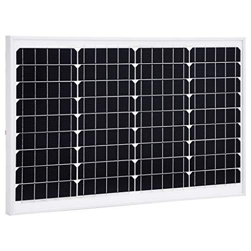 vidaXL Pannello Energia Solare 40 W Leggero Portatile Celle Policristalline Schermo Fotovoltaico in Alluminio e Vetro di Sicurezza Telaio Alluminio