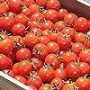 北海道 南幌町産 ミニトマト ラブリー藍 3kg 南幌町明るい農村ネットワーク とまと トマト 野菜 お取り寄せ