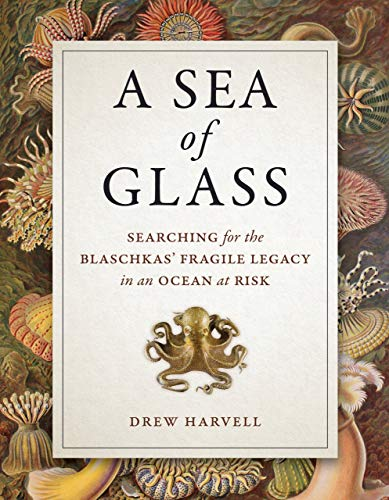 Harvell, D: Sea of Glass - Searching for the Blaschkas` Frag (Organisms and Environments, Band 13)