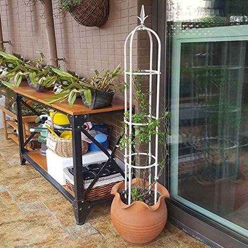 PLHMS Jardin Obelisk Trellis, Support de Soutien Fleur Rose Ronde Treillage métallique pour Grimpantes et Plantes, Présentoir Fournitures Jardin Jardinage Cadre Rack d'escalade Planteur,Blanc