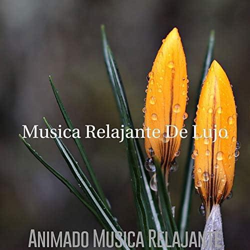 Musica Relajante De Lujo