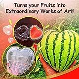 BXzhiri Heart Shaped Watermelon Shape Growth Mold, Magic Heart-Shaped Watermelon Shaping Growth Molds Magic Heart Fruit Mould