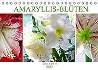Amaryllis-Blueten (Tischkalender 2022 DIN A5 quer): Majestaetische Blumen mit beeindruckenden Staubgefaessen (Monatskalender, 14 Seiten )