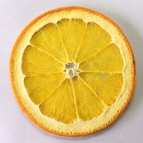 ZYC-WF EspecíMenes de Frutas Naranjas Y Naranjas, EspecíMenes de Flores Prensadas, EspecíMenes de Frutas Cortadas a Mano Bricolaje, Frutas Y Vegetales de Flores Prensadas de AráNdan