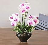 Marjon Flores Mariposa Orquídea Estilo Europeo Salón Artificial Flores Mobiliario Decoración Set Maceta Plantas Rosa