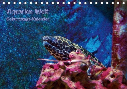 Aquarien-Welt Geburtstagskalender (Tischkalender immerwährend DIN A5 quer): Immerwährender Geburtstagskalender oder als Terminplaner verwendbar ... [Kalender] [Jun 14, 2013] Schneller, Helmut