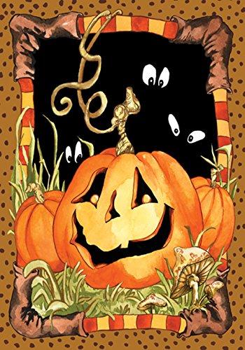 "Preisvergleich Produktbild Toland Home Garden Jack Pumpkin House Flag-28"" x40"" Mehrfarbig"