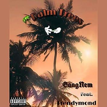 Palm Trees (feat. Trendymond)