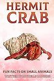 Hermit Crab: Fun Facts on Small Animals #9 (English Edition)