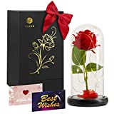 Beauty and The Beast Rose,Forever Rose, Enchanted Rose, Glass Dome Black Wood Base, Valentine's Party Gifts, Wedding Gifts, Best Gift for Her (Red Rose)