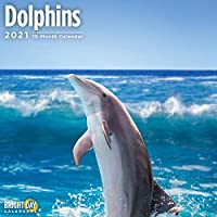 Bright Day Calendars 2021ドルフィンズウォールカレンダー バイ ブライトデイ、12 x 12 インチ、海洋動物の下で