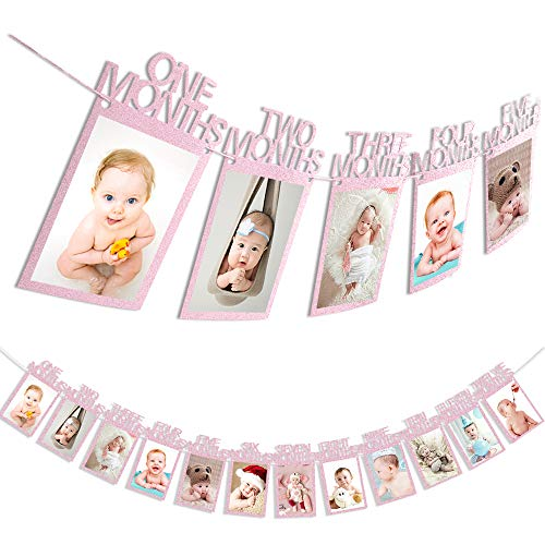 First Birthday Baby Photo Banner ,Rose Pink Monthly Milestone Photo Garland, Growth Record 1-12 Month Photo Prop ,First Birthday Celebration Decoration