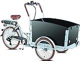 Elektro - Transportrad Voozer silber- schwarz gratis Winterset, Fahrfertig montiert