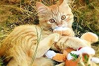 大人のための古典的なパズルパズル1000ピースジグソーパズル大人のための1000ピース子供大規模なパズルゲームおもちゃハイグレードウッドオレンジ猫で作られたギフト