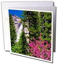 3dRose Danita Delimont - Trees - Western Redbud under Yosemite Falls, California, Usa - 12 Greeting Cards with envelopes (gc_258994_2)