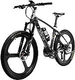 Bicicleta eléctrica de Nieve, Super-luz 18 kg de Fibra de Carbono, Bicicleta de montaña eléctrica, Bicicleta eléctrica, con, Freno hidráulico, batería de Litio, batería de Litio, Crucero para Adultos