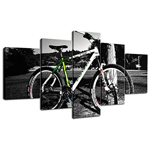 HSDVJZC HD-druk, 100 x 55 cm, interieur, kunst, canvas, bedrukte muur, modulair, 5 stuks, mountainbike, afbeeldingen, woonkamer, HD