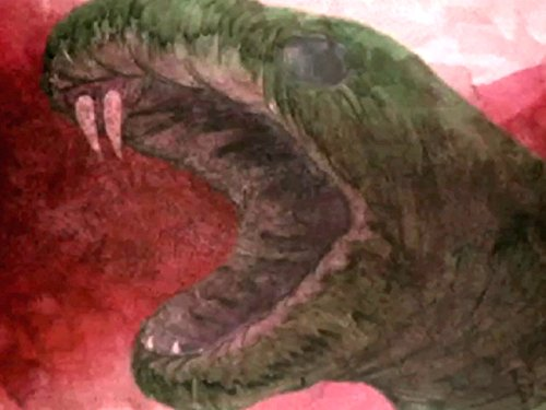 Dragons and Serpents