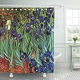 Leona Chesterton Duschvorhang Hinterhof Van Gogh Iris Vintage Garten Landschaft Mohn Pflanzen Home Decor wasserdichte Bad Bad Gardinen Set mit Haken