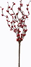 CWI Gifts 6-Piece 9-Branch Pip Berry Pick Set, 12-Inch, Red