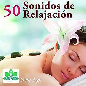 Sonidos de Relajación: Música para Meditación & Dulces Sueños, Musicoterapia Natural y Música Relajante con la Naturaleza