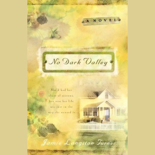 No Dark Valley audiobook cover art