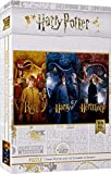 HARRY POTTER Puzzle Harry, Ron and Hermione Names Official Merchandising Juguetes, Color (Dirac SDTWRN23239)