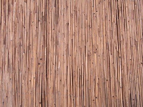BIHL Schilfmatte Sichtschutz Schilfrohrmatte Windschutz Strohmatte EU Ware 180 x 600 cm - nur 3,- € Versand/Blitzversand 1,8 x 6 m