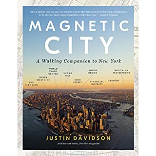 Magnetic City audiobook cover art