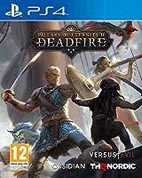 Pillars of Eternity II - Deadfire (PS4) (輸入版)
