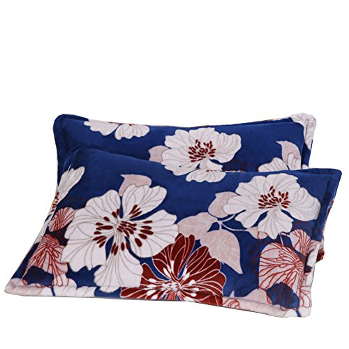 Black Temptation [100% Polyester] Bleu Fleur élégante Imprimé Cosy 2PC Twin Flanelle Pillow Shams