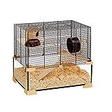 Ferplast Cage pour Hamsters et Souris KARAT 60 Petits Rongeurs, Deux étages avec Accessoires, en Verre et Métal