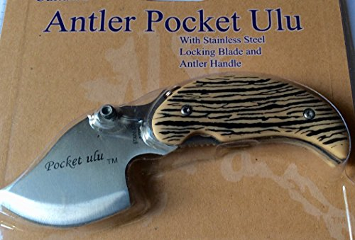 Alaska Cultured Antler Handle Pocket Ulu Knife
