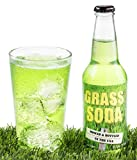 Grass Soda Pop, Weird and Surprising Soda