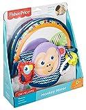 Fisher-Price Miroir d'éveil de la jungle, jouet avec tissus doux, textures amusantes et activités pour stimuler les sens de bébé, dès la naissance, DYC85