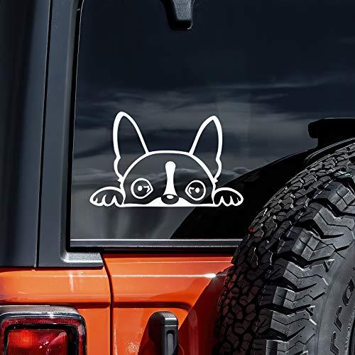 Boston Terrier Dog K9 Peeking Over Vinyl Car Truck Decal Sticker | White | 6'