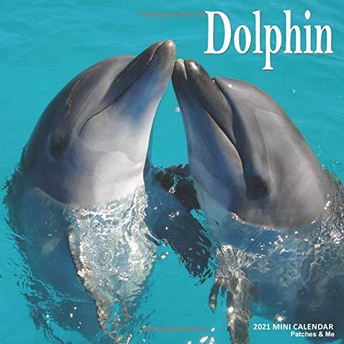 Dolphin: 2021 Calendar