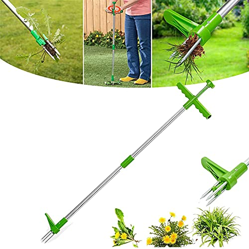 MAQIANFAA Stand-Up Weeder Standing Plant Root Remover Weed Puller Hand Tool 36inch Long Handle Garden Dandelion Manual Grandpas Gardening Tools with 3 Claws and High Strength Foot Pedal Green-1PCS